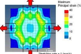 [AOP]鳥取大 - 脊髄硬膜の動的二軸引張試験方法の開発