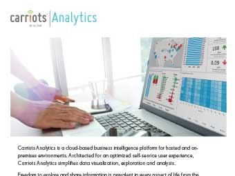 Carriots Analytics Flyer