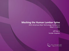 Meshing the Human Lumbar Spine